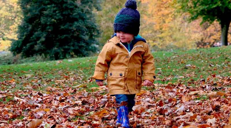 Kleiner Junge im Herbstlaub